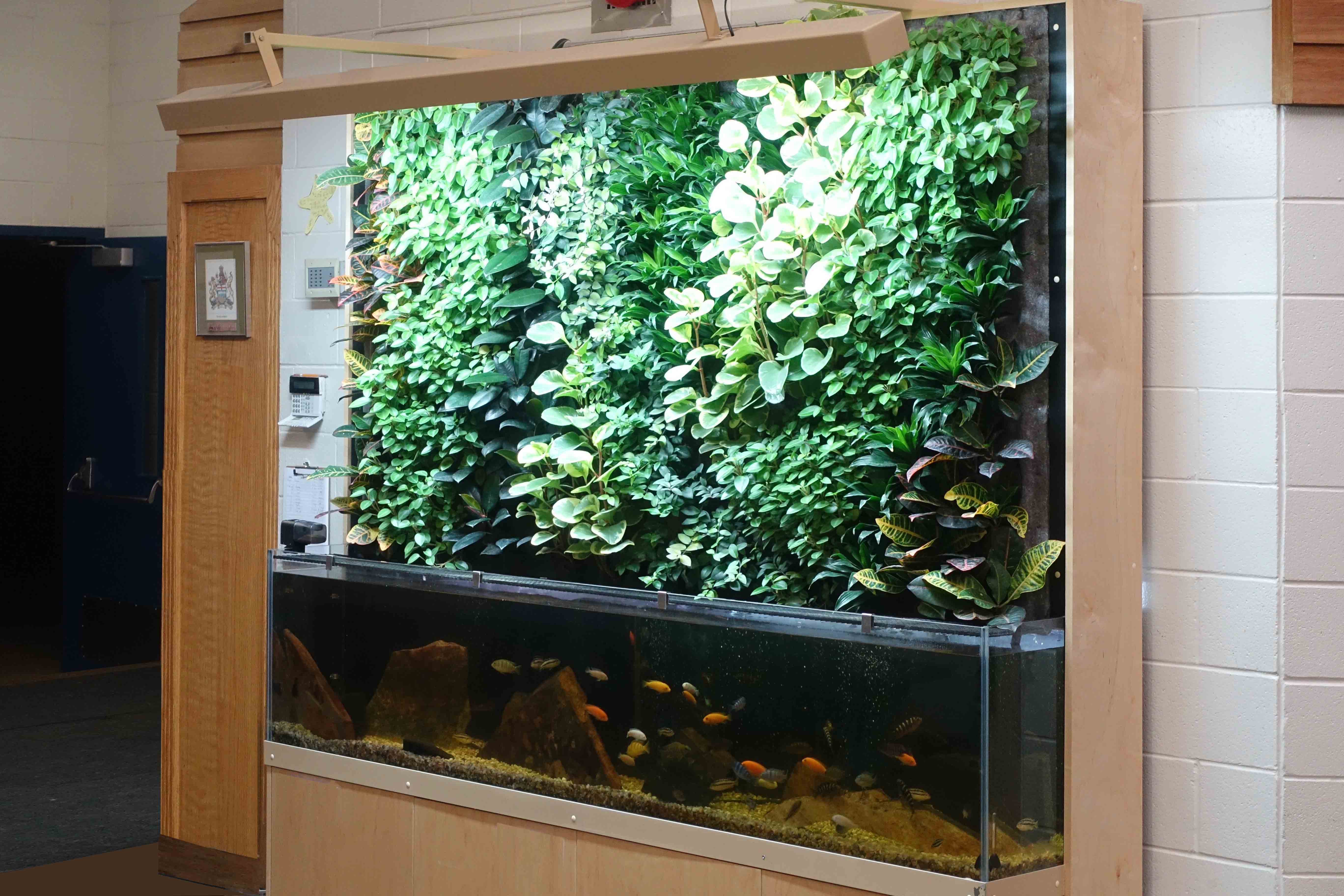 Living Wall Art | Vertical Oxygen